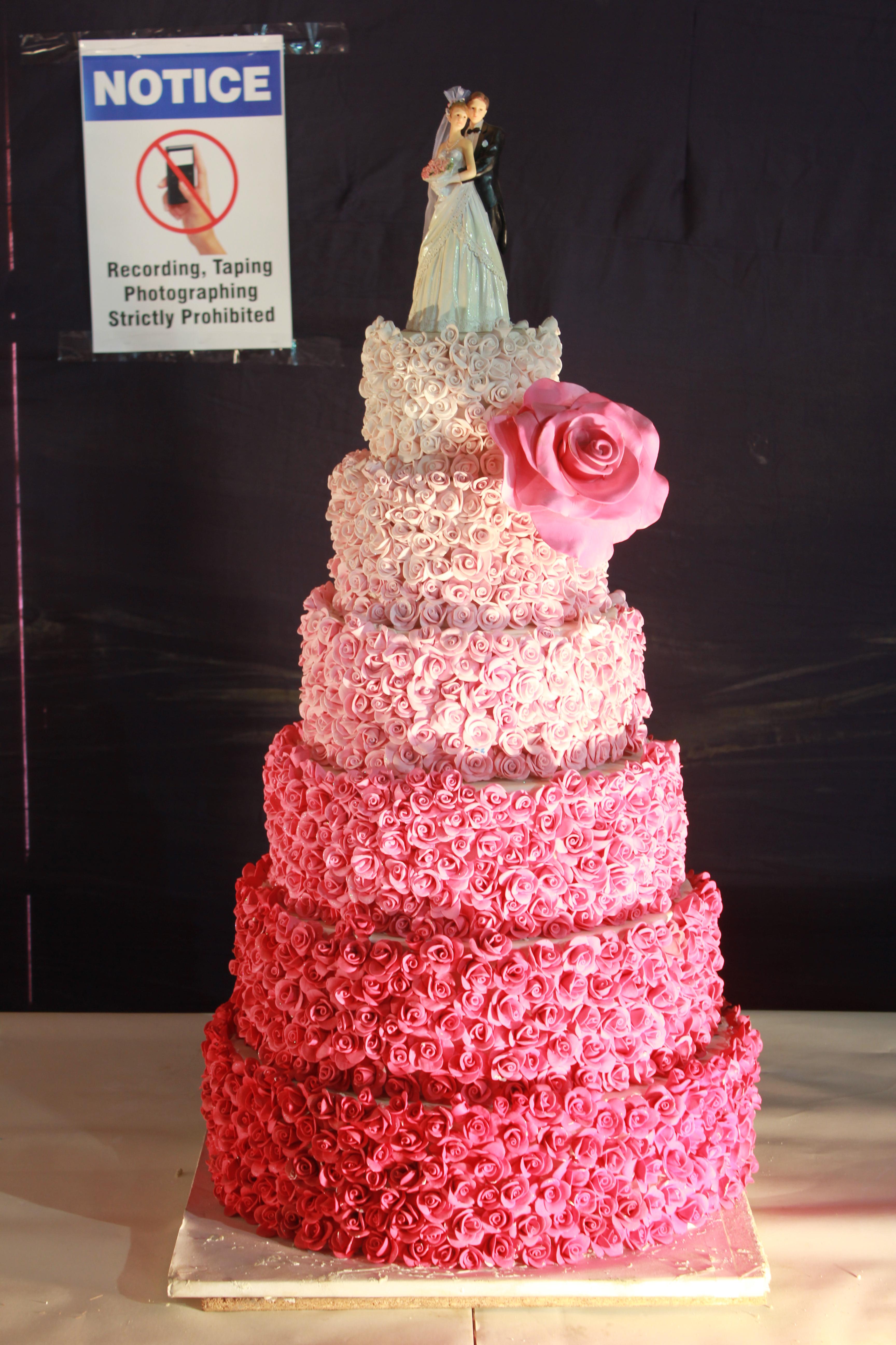 Nilgiris Cake Show 2013 | Potpourri
