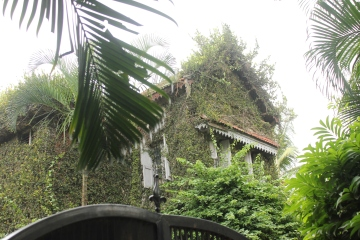 The facade of Om Bhagya Bhavan covered with a blanket of greenery