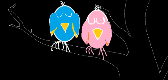 pair of birds