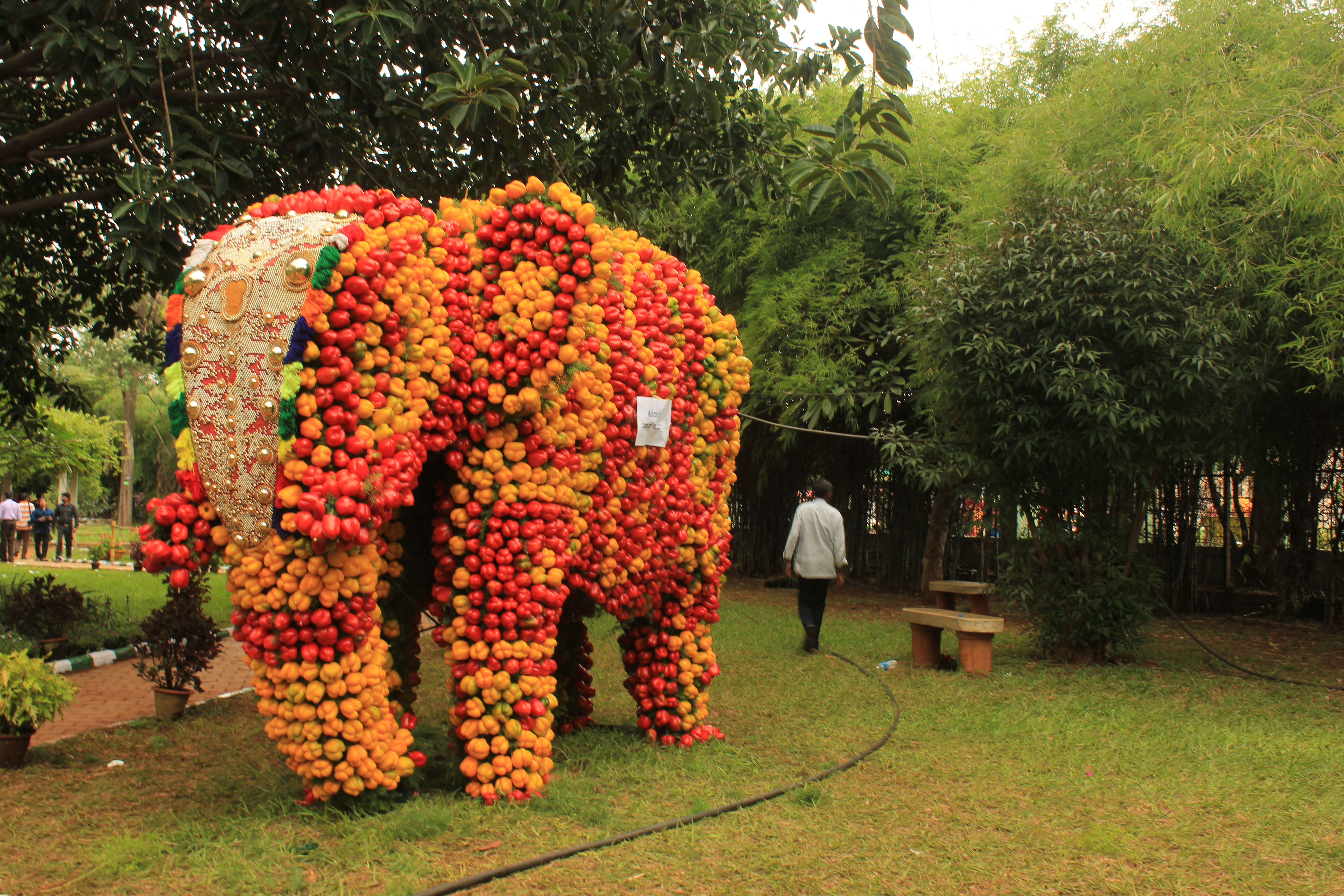 90c1786f4458 A stunning replica of a royal elephant adorned with red and yellow  capsicums grabbed eyeballs at the Independence Day edition of the Lal Bagh  Flower Show ...
