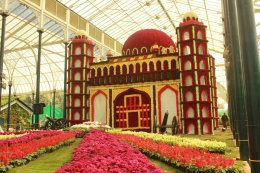 Lal Bagh Flower Show – January 2017